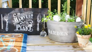 How To Plant An Herb Garden In A Galvanized Bucket