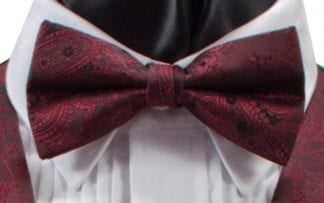 Paisley Self Bow Tie Black and Red