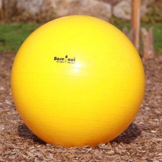 horse training ball