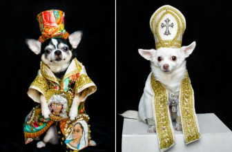 Met Gala Costumes Recreated for Dogs