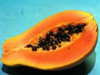 Papaya for gut smoothies