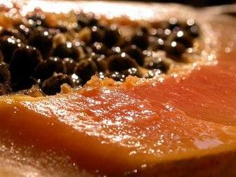 Papaya for parasitic worms