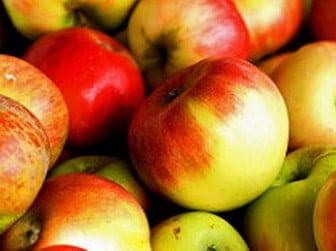 Apples in grown in america super food