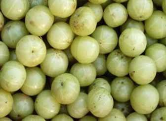 Indian Gooseberry uses