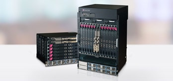 Check Point High Performance and Scalable Platforms Firewall 4000/64000 Series