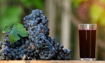 Making Grape Juice with A Juicer – Recipe and Tips