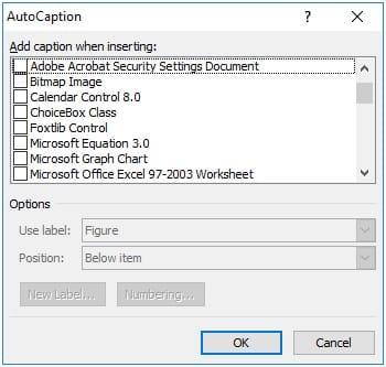 Auto-Caption-Dialogbox