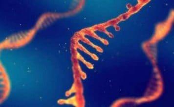 artrite reumatoide scoperto nuovo gene