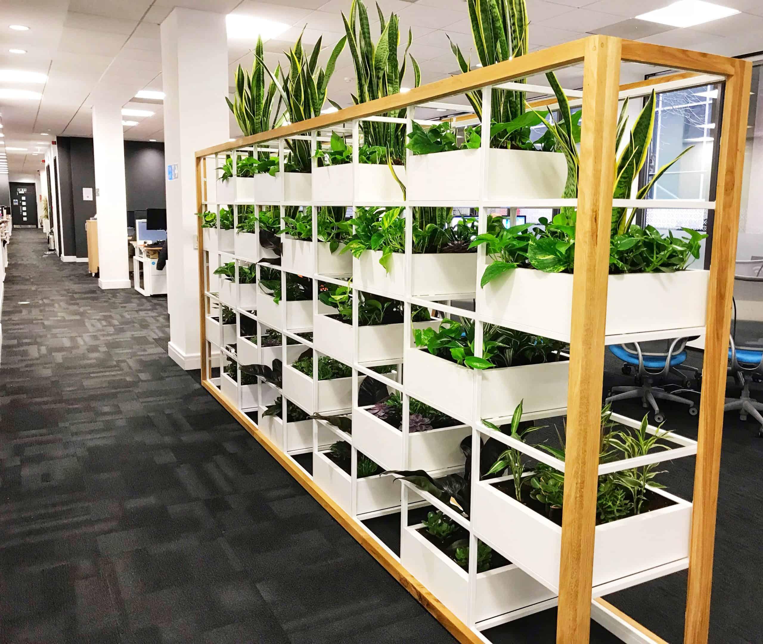 Xero plant installation