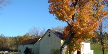 Farm stays can provide comfortable and active vacations for families