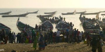 The crowds at the mbour fish market, africa