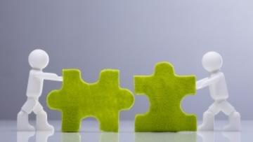 Symbolbild für Teamentwicklung