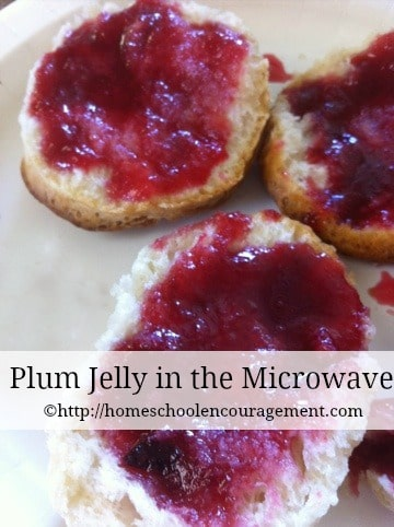 Plum Jelly in the Microwave