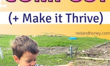 image of a kid standing next to a compost bin in the backyard, with an excited expression and outstretched arms. Text overlay reads How to Start a Backyard Compost and make it thrive.