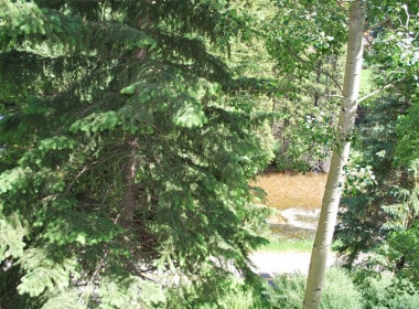 208_river-view_2015