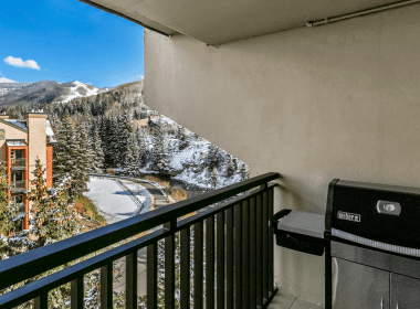 2019-602-patio-view