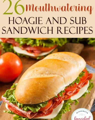 Who doesn't love a good hoagie! There are so many different options and ways to create your own hoagie. Make a few of these and celebrate National Hoagie Day on May 5th with some friends! #hoagies #subsandwich #recipes #hsgiveaways