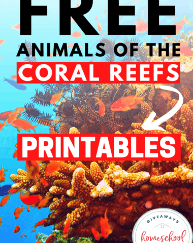 FREE Animals of the coral reefs printables text overlay of a coral reef photo.
