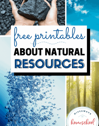 Free Printables About Natural Resources. #naturalresources #naturalresourceprintables #conservation #conserveresources