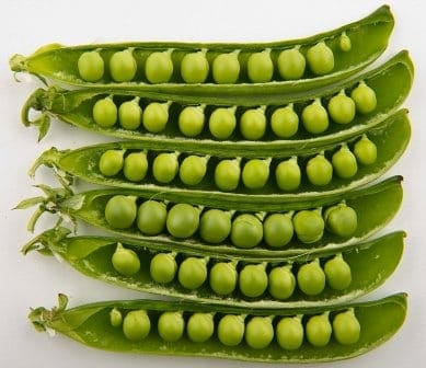 100 Vegetables name in Hindi and English with Picture | हिन्दी में
