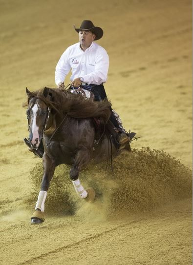 USA Leads Reining Competition in Normandy