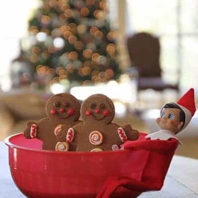 Magic Seeds Elf on the Shelf Idea
