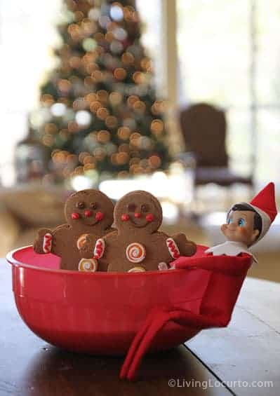 Elf on the Shelf Magic Cookie Seeds