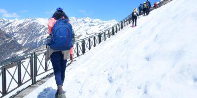 Chopta chandrashila trek in winter -Trekking in Chopta - On the way to tungnath - Chandrashila