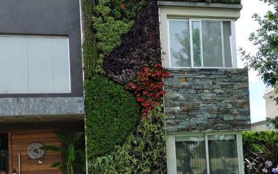 La moda de los muros verdes: jardines verticales en Buenos Aires