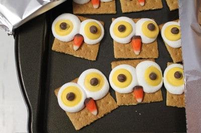 Owl Smores School Party