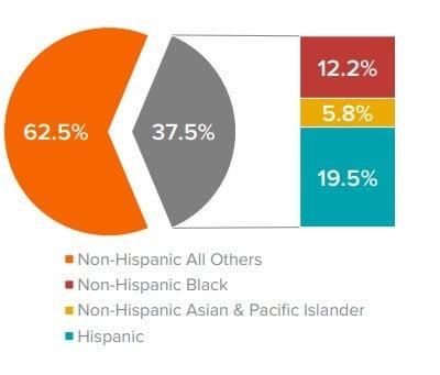 Claritas metrics Multicultural Marketing