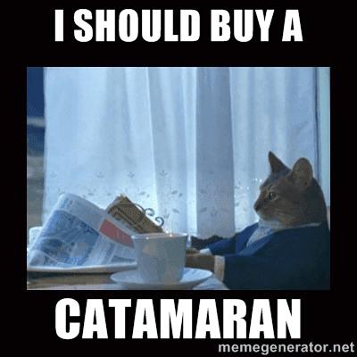 Cat on Catamaran