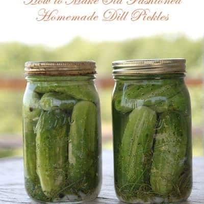 Refrigerator Dill Pickles Recipe | Living Locurto