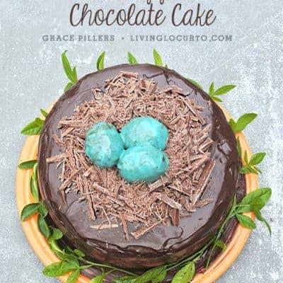 Robin's Egg Chocolate Cake