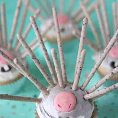 Wonder Park Porcupine Cupcakes
