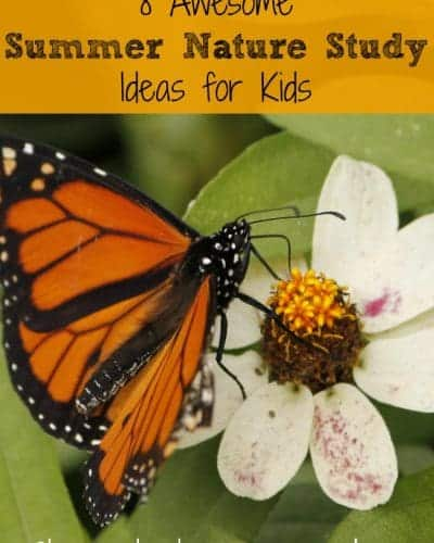 8 Awesome Summer Nature Study Ideas for Kids | encouragingmomsathome.com