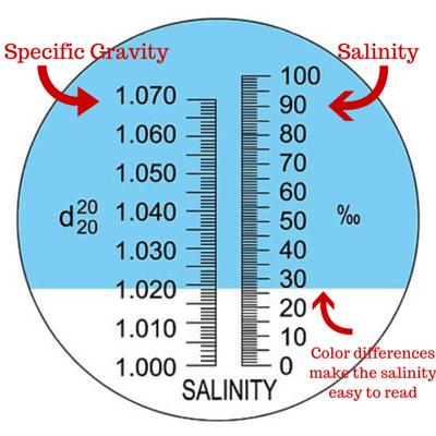 dual refractometer