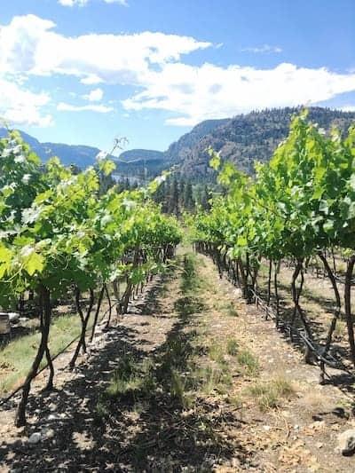 How to Explore British Columbia's Wine Country | Winetraveler.com