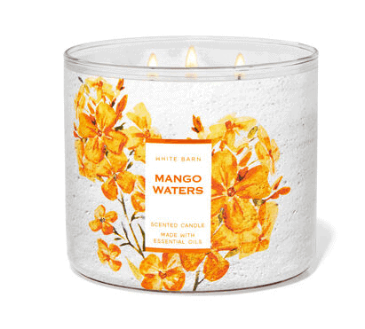Mango waters candle