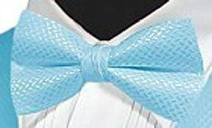 Bow Tie Geo Collection Satin Pre Tied Bowtie   Prom Wedding Colors