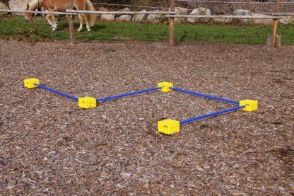 kartis žirgų treniravimui