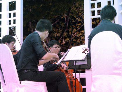 String Quartet at Botanic Gardens, Bandstand