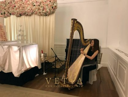 Solo Harp for Eunice's Wedding at Fullerton Hotel, Straits Room
