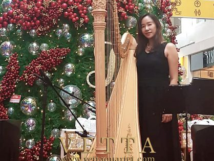 Solo Harp for Christmas at Clarke Quay Central