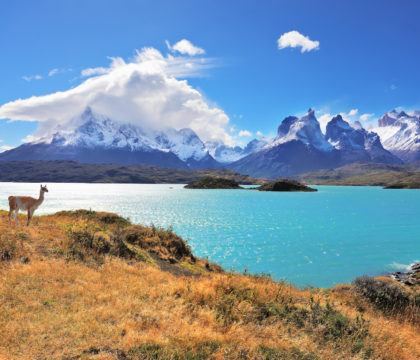Planning a trip to Patagonia? Learn about the 6 different Patagonia regions and plan your travels with our list of must-do actvities in each place.