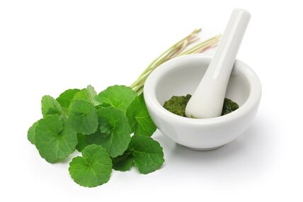 centall asiatica as anti inflammatory and healing extract for skin