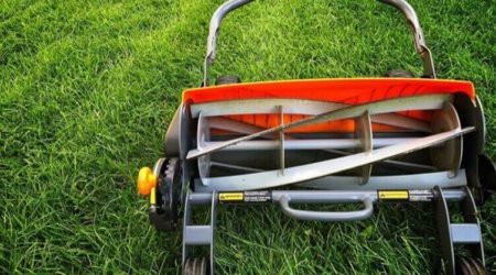Best Reel Mowers for Your Small Yard A Buyer's Guide + 5 Top Picks