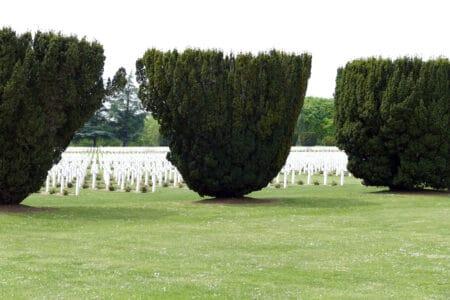 Mémorial De La Bataille De Verdun