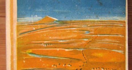 Wanderer ohne Ziel - Arthur Heye