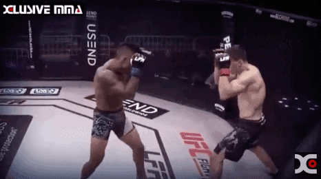 Kai Kamaka vs Michael Stack Fight Highlights